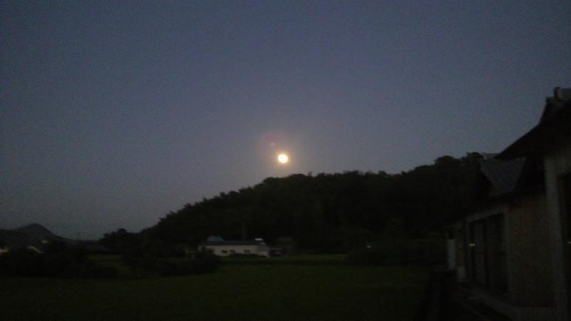 中秋の名月を眺めながら